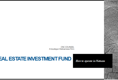 Real Estate Investment Fund – How to operate in Vietnam