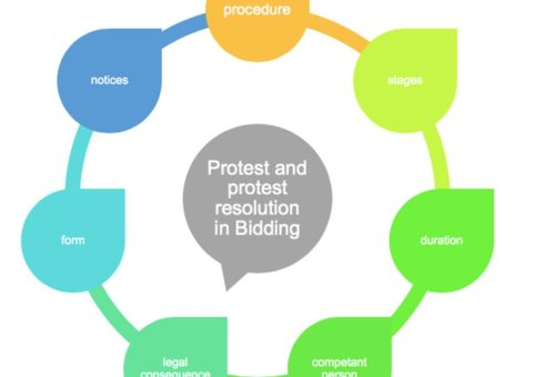 Proposals and resolutions during the bidding period